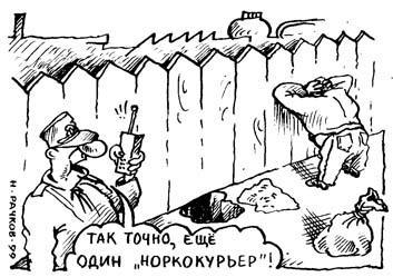 Карикатура: нОркокурьер, Николай Рачков