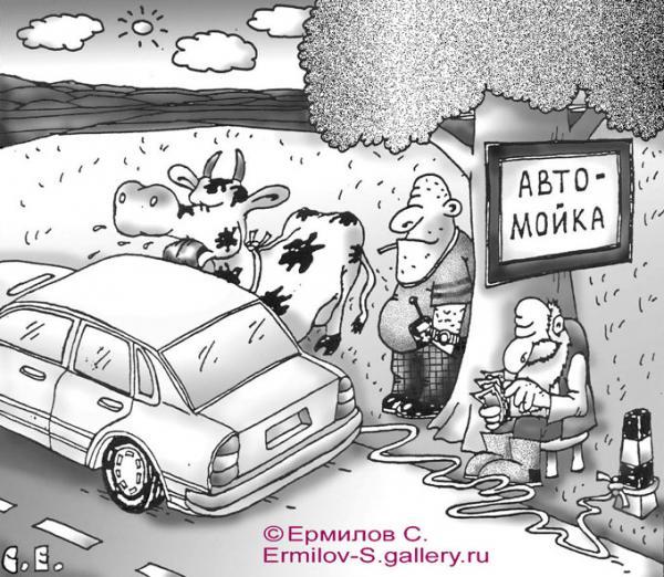 Карикатура: Автомойка, Сергей Ермилов