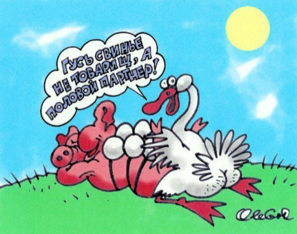 Карикатура: Гусь свинье - не товарищ, Олег Горбачёв