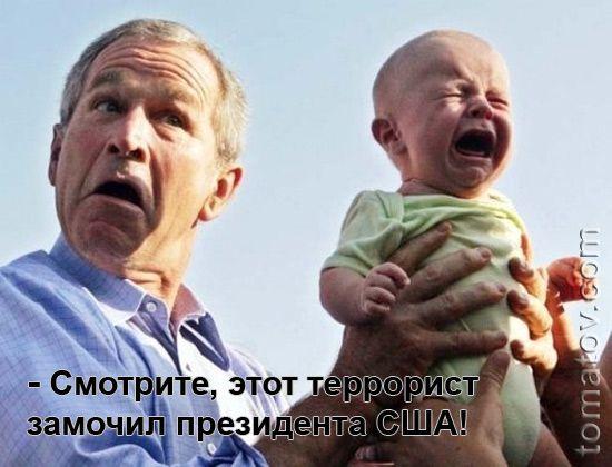 Карикатура: террорист, Томатов