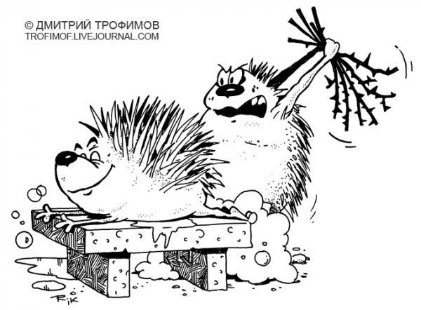 Карикатура: С веничком, Трофимов Дмитрий