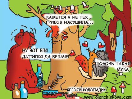 Карикатура: медведь, белочка, olenchinkova